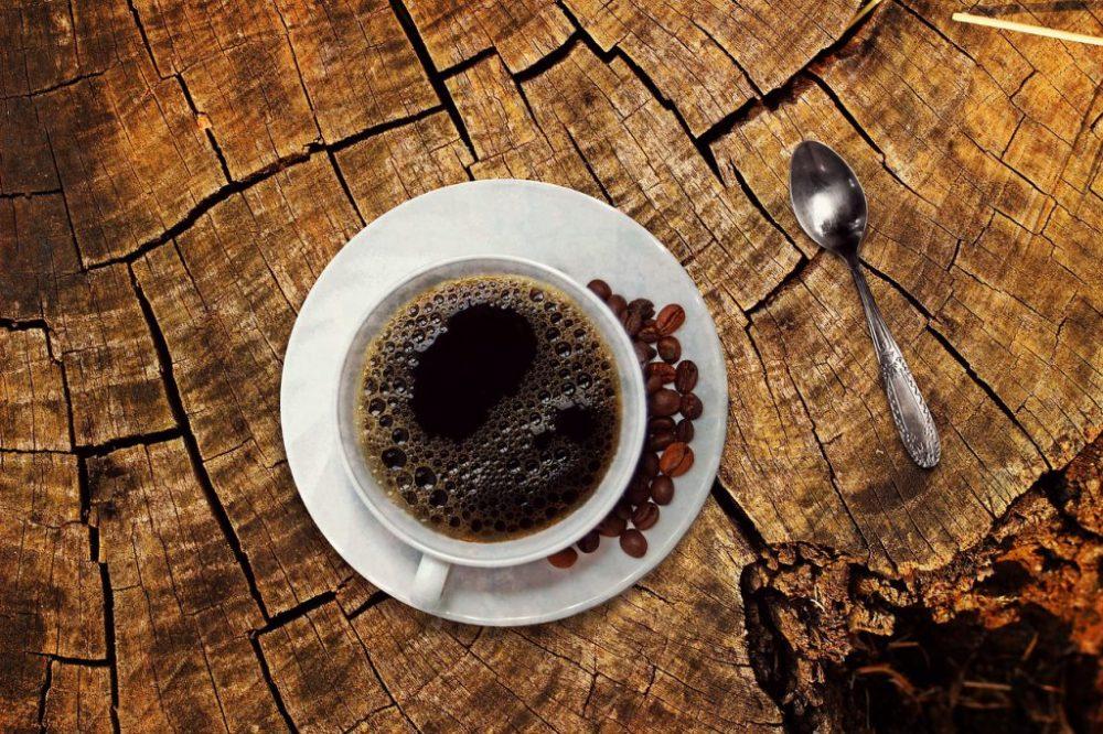 caffè kopi luwak foto
